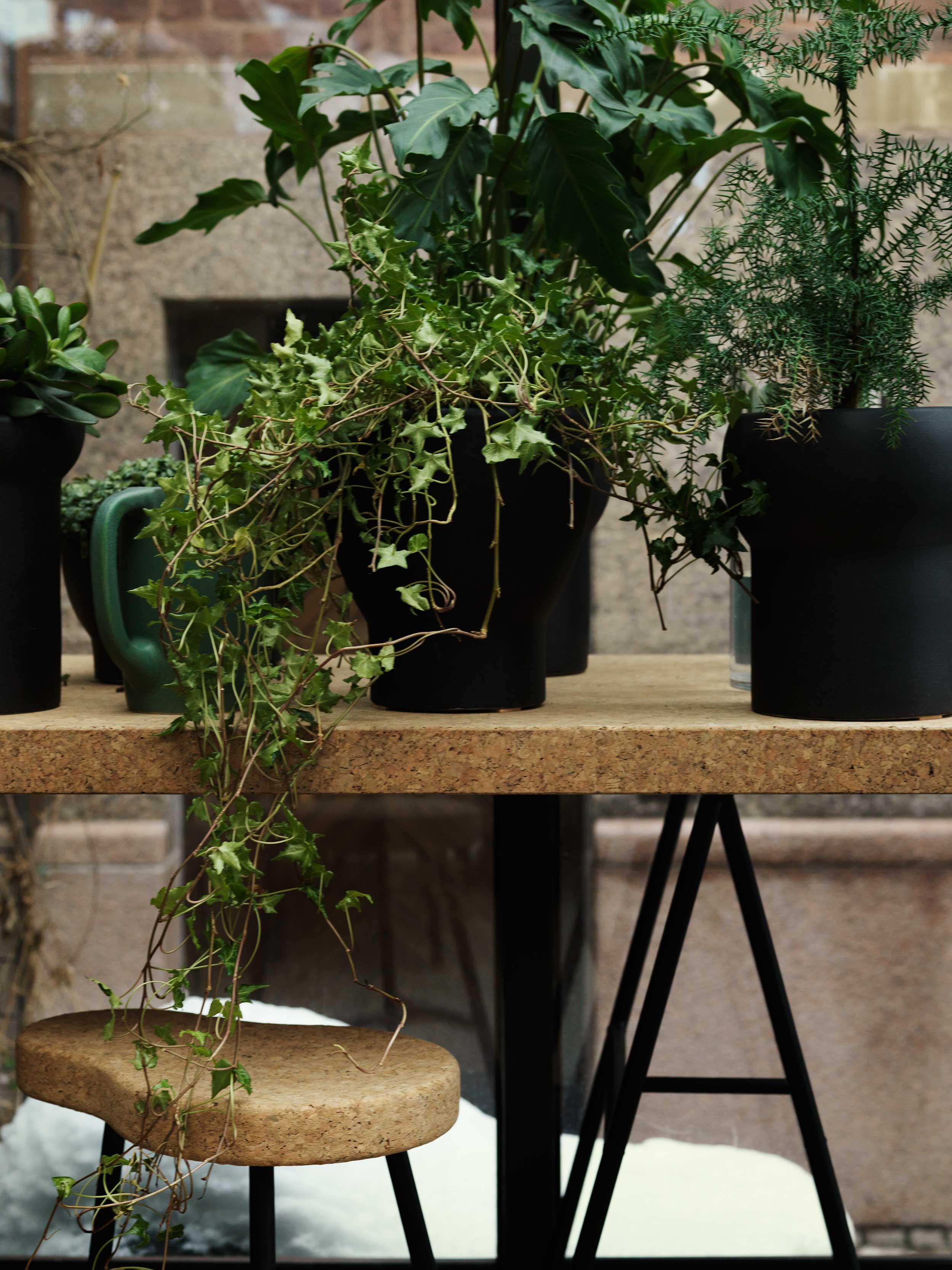 Accessories | Studio Annetta